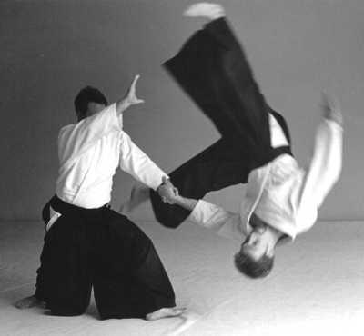 aikido2
