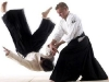 aikido-action-shot-1